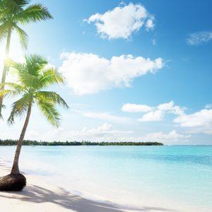 הפלגה לקריביים | MSC Divina | Msc Cruises