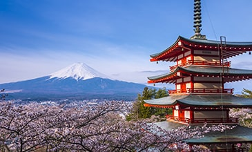שייט ליפן | קרוז ליפן | הפלגה ליפן