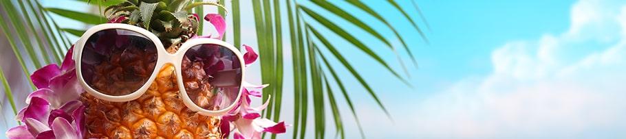 שייט להוואי