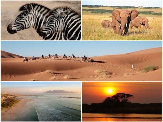 שייט בדרום אפריקה